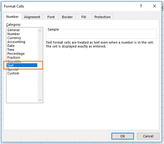 Format Cell Excel text