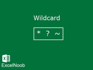 Wildcard Excel
